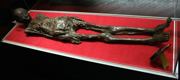 The Zagreb Mummy, which has accidentally thrown light on a poorly-known culture. Photo by Wikimedia user SpeedyGonsales, used under a CC Attribution Unported License.